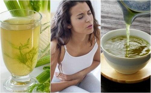 Hazımsızlıkla Savaşmak İçin İçebileceğiniz 5 Bitkisel Çay