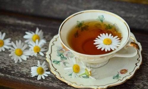 papatya çayı sindirim sistemi sorunları