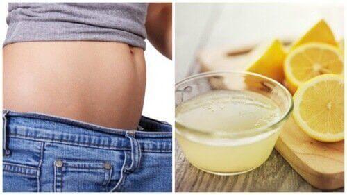 Limon İncelmeniz İçin Size Nasıl Yardımcı Olabilir?