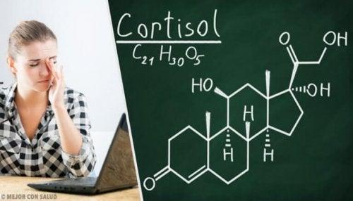 Yüksek Kortizolü Düşürmek: Sağlıklı Alışkanlıklar ve Doğal Çözümler