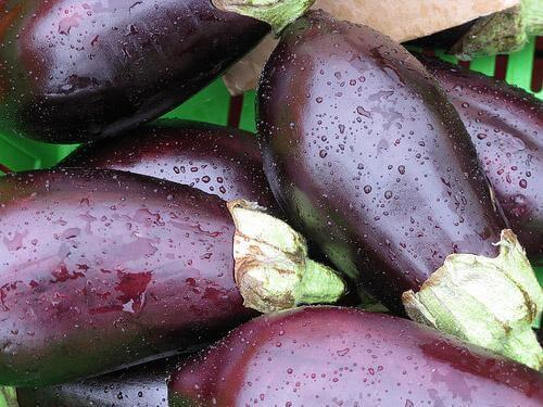 yıkanmış patlıcan