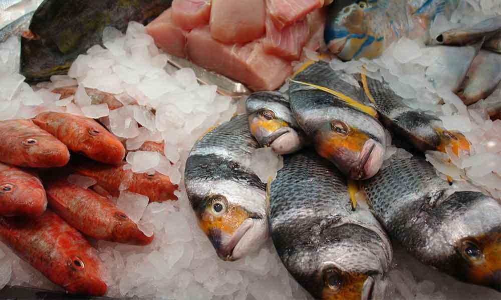 marketten balık almak