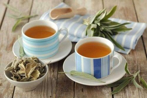 Ada Çayı ve 6 İyileştirici Özelliği