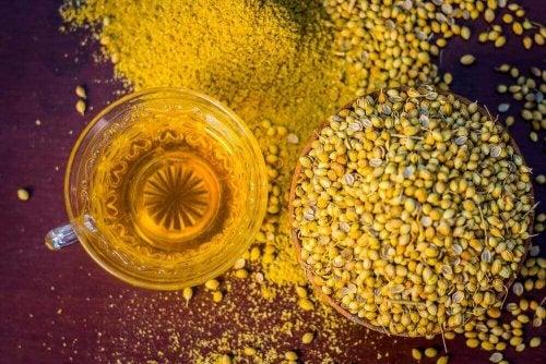 kişniş tohumu çayı