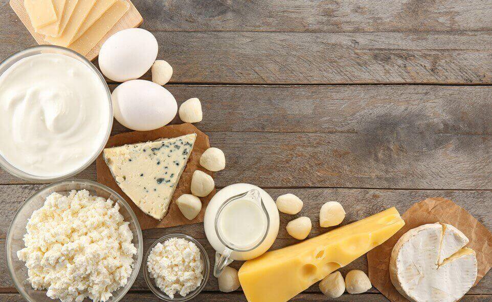 kaşar peynir süt yoğurt