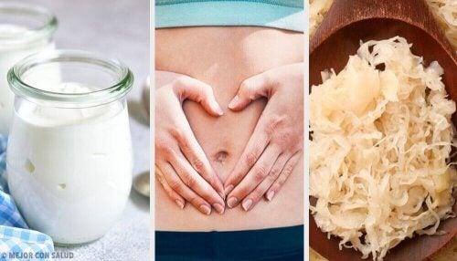 Daha Sağlıklı Bir Bağırsak Florası İçin Probiyotik Gıdalar