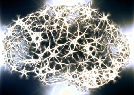 beyin ve sinirleri