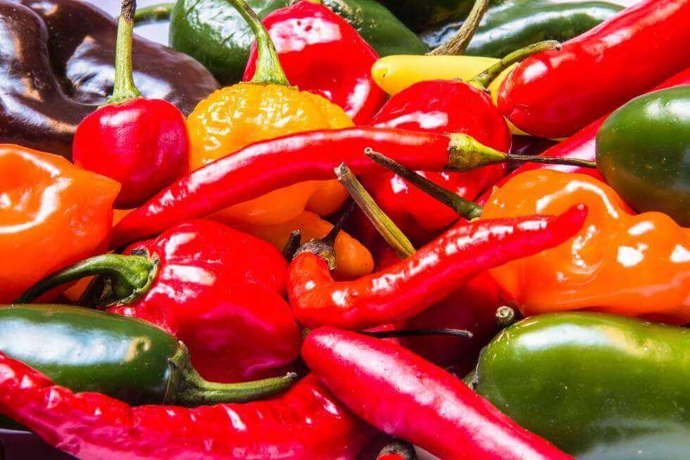 kırmızı ve yeşil biberler