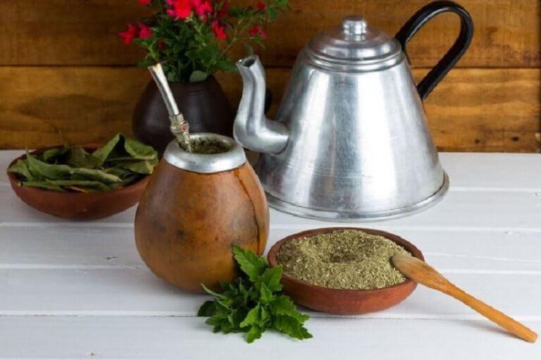 yerba çayı yapmak
