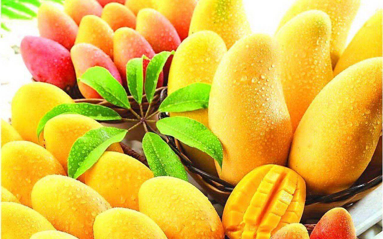 bir düzine mango