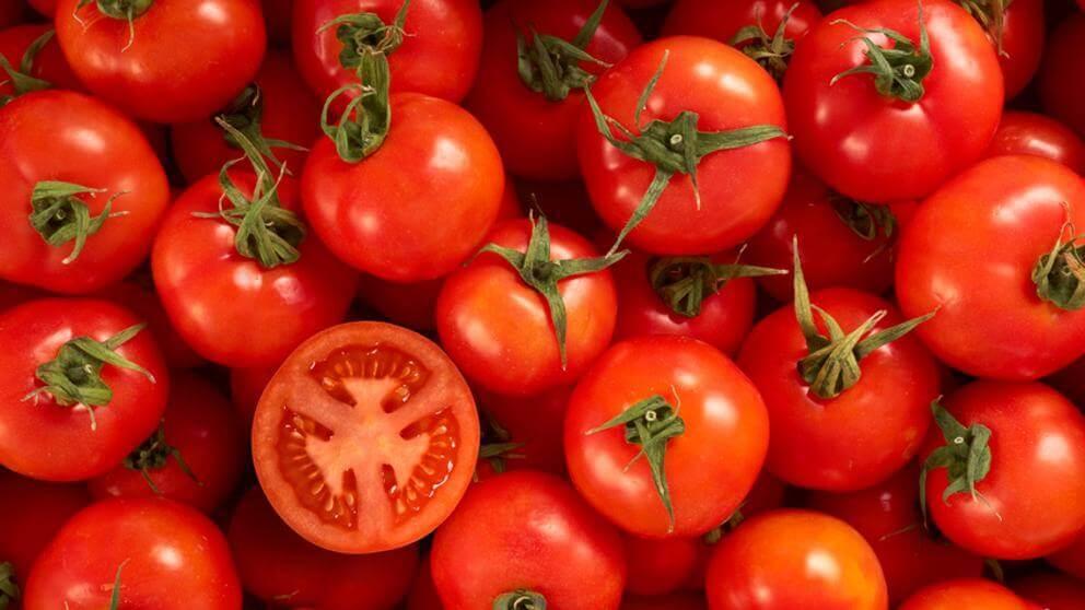 bir kasa domates