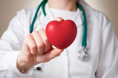 doktor elinde kalp var