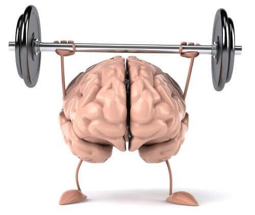 vücut çalışan beyin