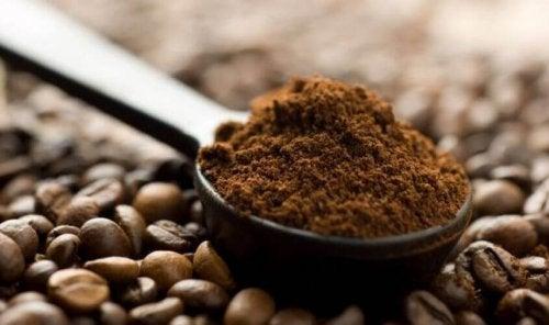 kahve çekirdekleri çekilmiş kahve