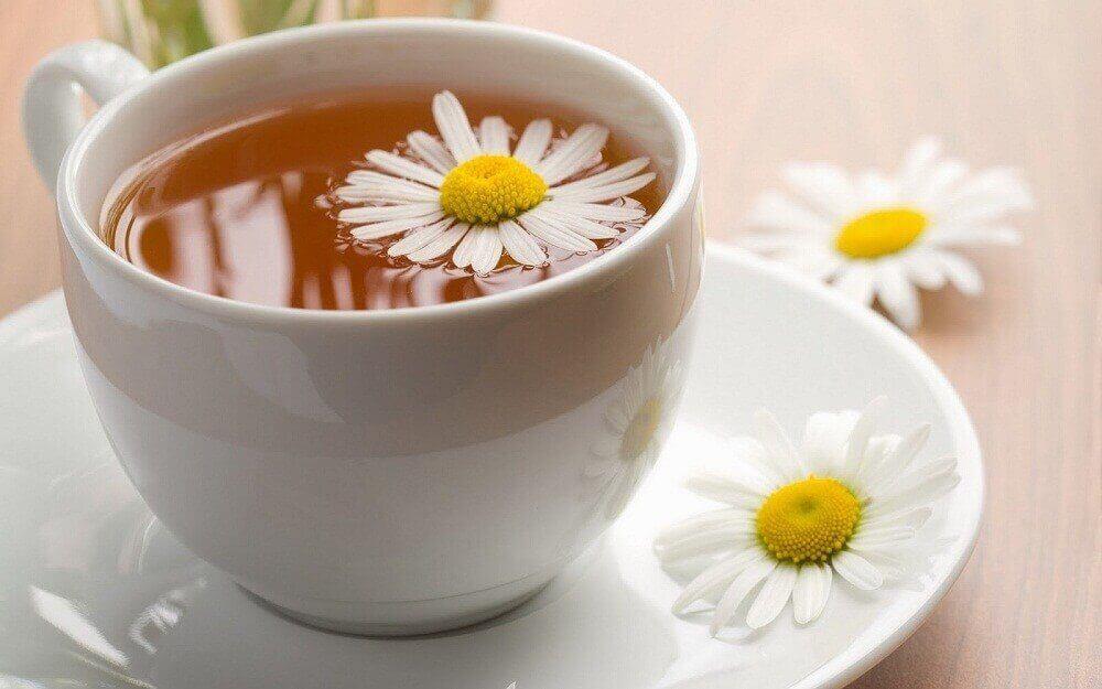 beyaz porselen bardak içinde papatya çayı