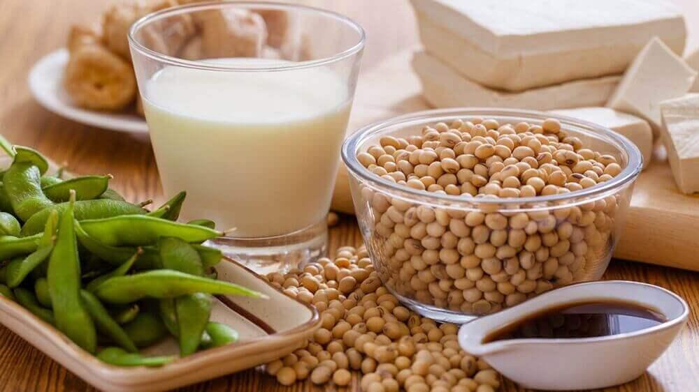 soya fasülyeleri ve süt
