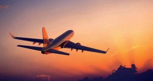 havada süzülen bir uçak ve gün batımı