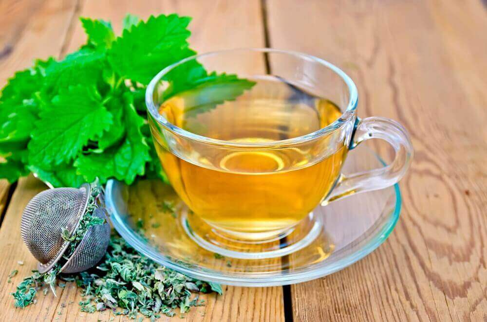 melis otu çayı