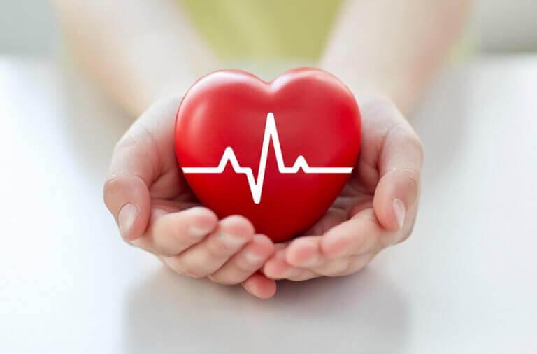 elde sağlıklı kalp
