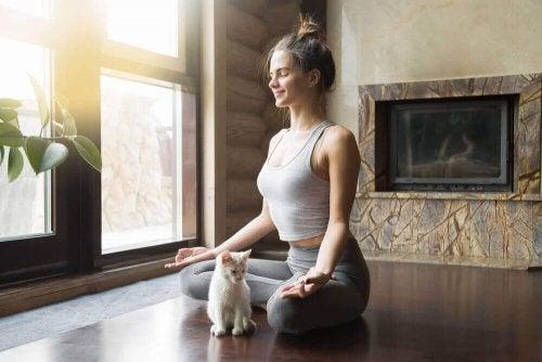 evde yoga yapan kadın beyaz kedi