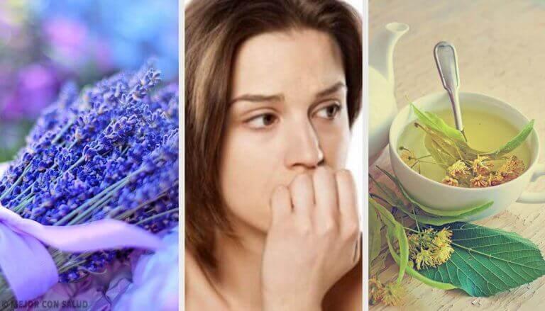 Anksiyeteyi Yatıştırmak için En İyi 5 Doğal Anksiyolitik