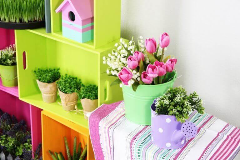 mobilya üstünde bitkiler