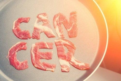 DSÖ'nün Et ve Kanser Üzerine Bulguları