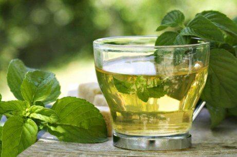 bir bardak yeşil çay