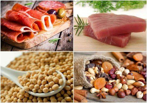 proteinli besinler bütünü