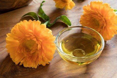turuncu aynısefa çiçeği ve yanında yağ