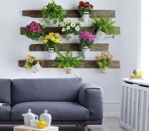 evde bitki bakımı