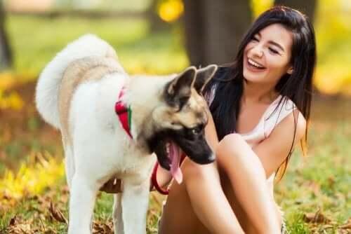 köpek mutlu kadın orman