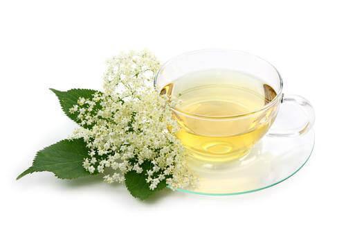 cam fincanda mürver ağacı çayı