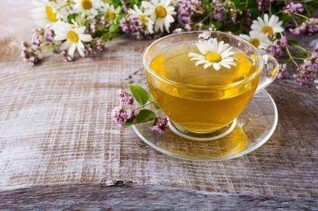 cam fincanda papatya çayı