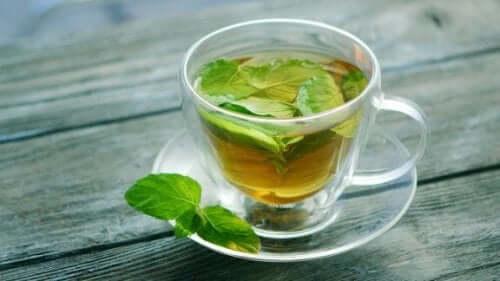 Nane Çayının Sağlığa Faydaları