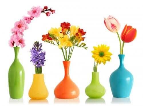 içi çiçek dolu renkli vazolar
