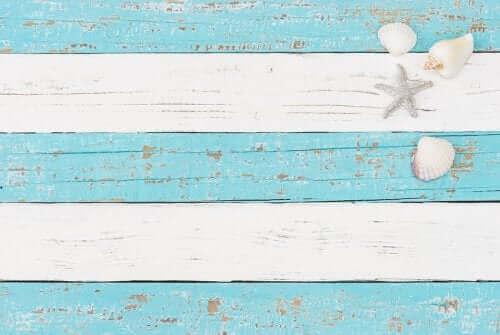 mavi beyaz çizgili zeminde deniz kabukları