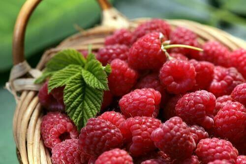 sağlıklı ve düşük kalorili yiyecekler