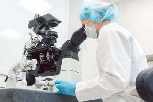 Preimplantasyon Genetik Tanı Nedir?