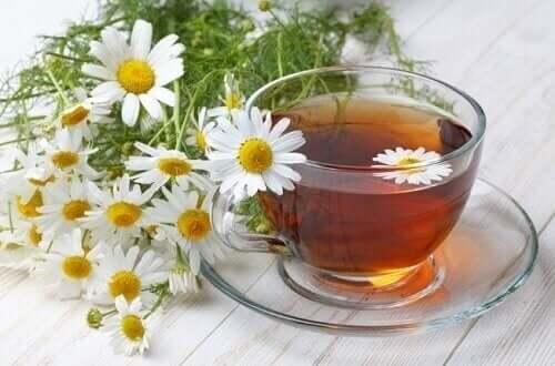 bir bardak papatya çayı ve taze papatyalar