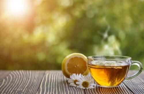 papatya çayı ve sarı limon