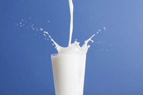 Hangisi Daha İyi: Tam Yağlı Süt Mü Yarım Yağlı Süt Mü