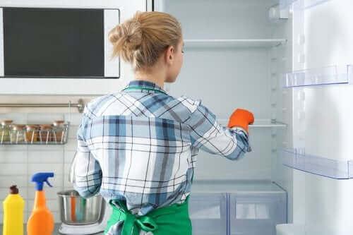Buzdolabını Temizlemek İçin Çevre Dostu Yöntemler