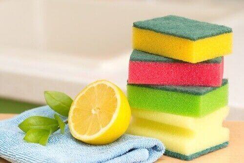 limon ve sünger