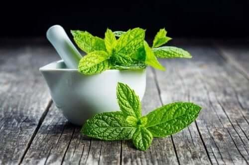 mide ağrısını hafifletmek için nane çayı