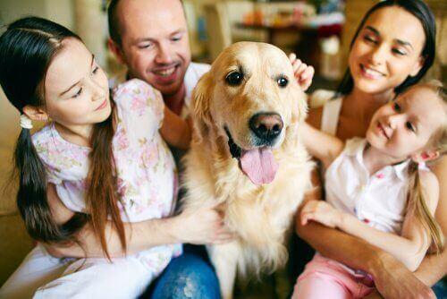 Köpeklerini seven bir aile.