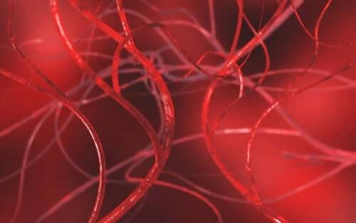 Arterlerdeki Tıkanıklığı Açmak İçin 4 Doğal Reçete