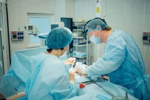 Ameliyathanede iki doktor