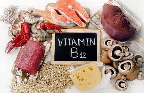B12 vitamini bakımından zengin olan besinler.