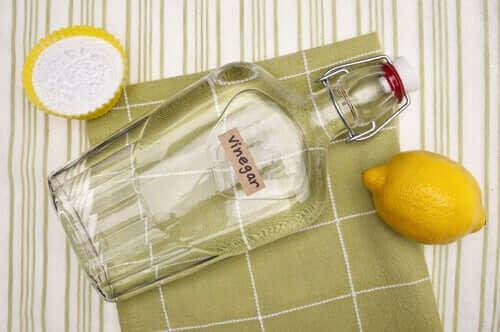 bir şişe beyaz sirke ve limon